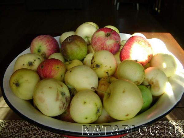 Яблоки для мармелада