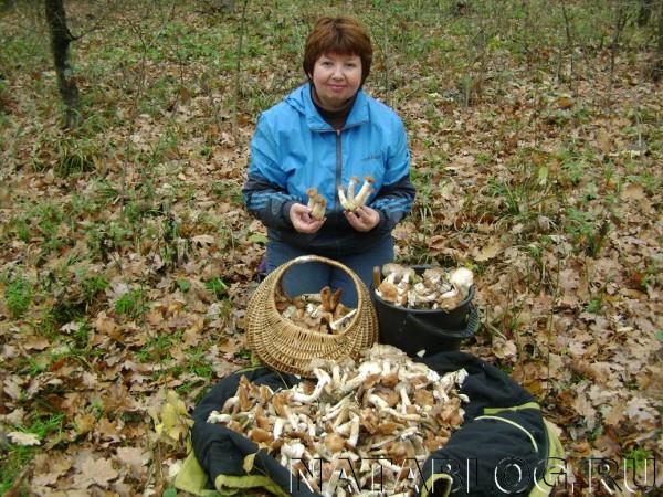 Я с грибами