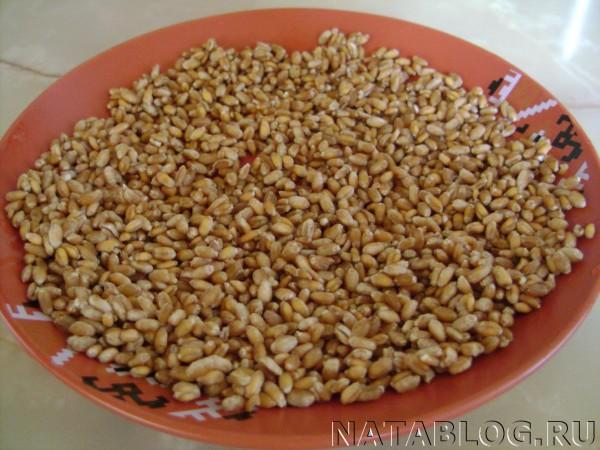 Зерна на блюде