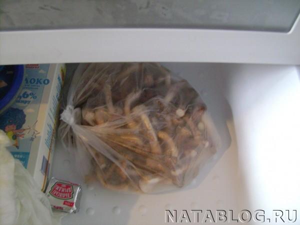 Замороженные опята в морозильной камере
